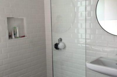 Frameless Shower Screen Panel